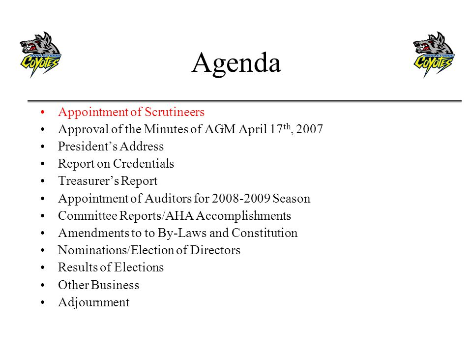 Agenda Appointment of Scrutineers Approval of the Minutes of AGM April 17 th, 2007 Presidents Address Report on Credentials Treasurers Report Appointment of Auditors for 2008-2009 Season Committee Reports/AHA Accomplishments Amendments to to By-Laws and Constitution Nominations/Election of Directors Results of Elections Other Business Adjournment