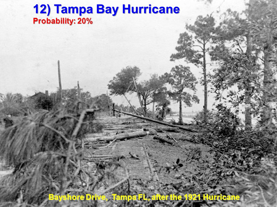 12) Tampa Bay Hurricane Probability: 20% Bayshore Drive, Tampa FL, after the 1921 Hurricane