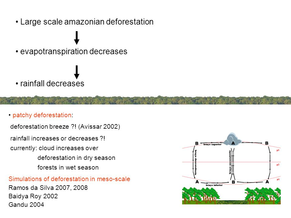 INTRODUCTION Large scale amazonian deforestation evapotranspiration decreases rainfall decreases patchy deforestation: deforestation breeze .