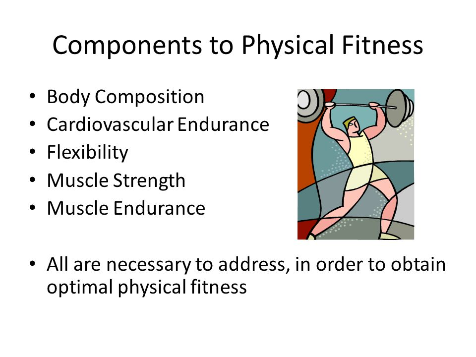Components to Physical Fitness Body Composition Cardiovascular Endurance Flexibility Muscle Strength Muscle Endurance All are necessary to address, in order to obtain optimal physical fitness
