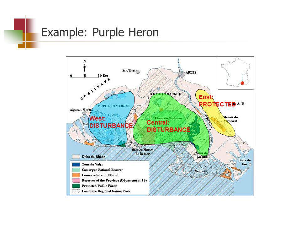 Example: Purple Heron West: DISTURBANCE Central: DISTURBANCE East: PROTECTED