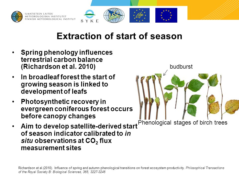 Extraction of start of season Spring phenology influences terrestrial carbon balance (Richardson et al. 2010) In broadleaf forest the start of growing