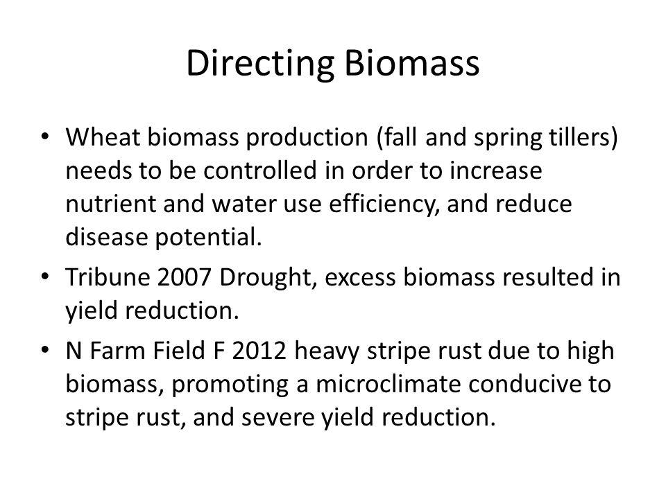 Directing Biomass Wheat biomass production (fall and spring tillers) needs to be controlled in order to increase nutrient and water use efficiency, and reduce disease potential.