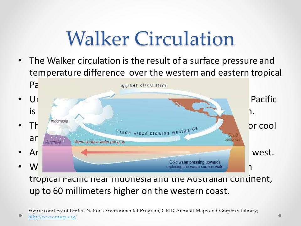 Walker Circulation The Walker circulation is the result of a surface pressure and temperature difference over the western and eastern tropical Pacific