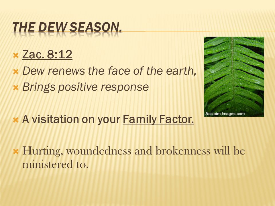 Zac. 8:12 Dew renews the face of the earth, Brings positive response A visitation on your Family Factor. Hurting, woundedness and brokenness will be m