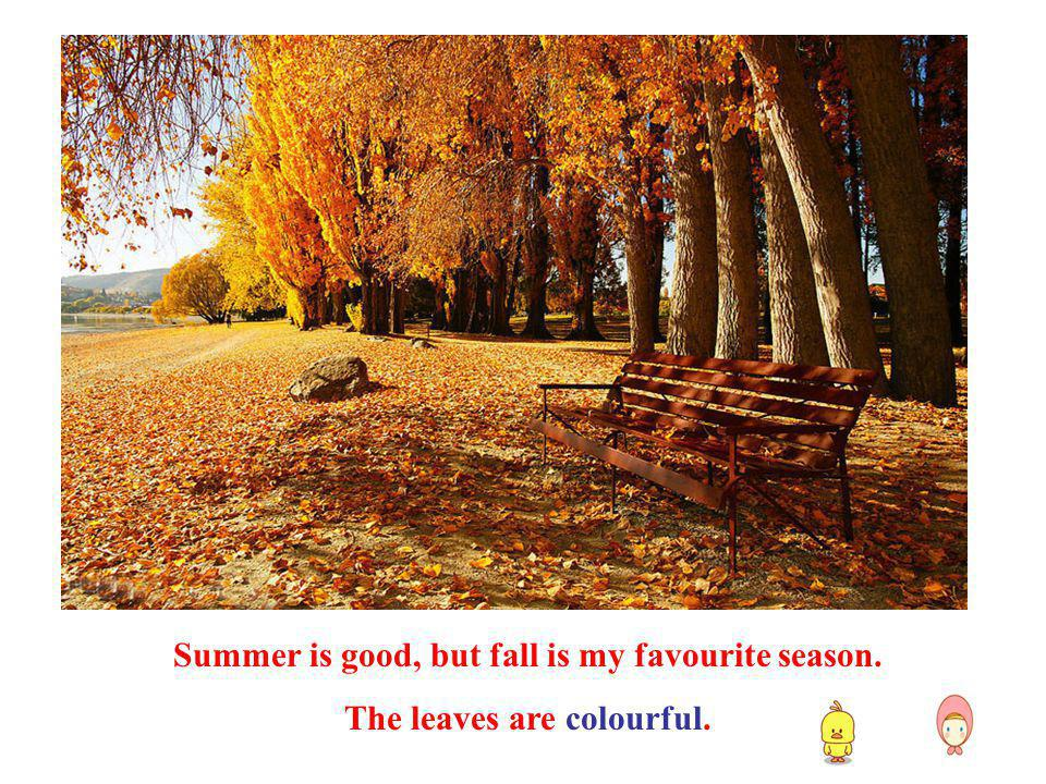 Summer is good, but fall is my favourite season. The leaves are colourful.