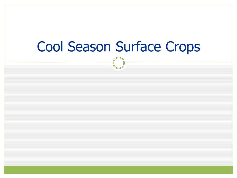 Cool Season Surface Crops