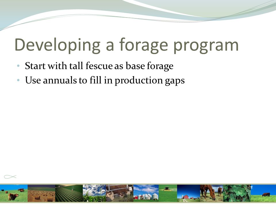 Developing a forage program Start with tall fescue as base forage Use annuals to fill in production gaps