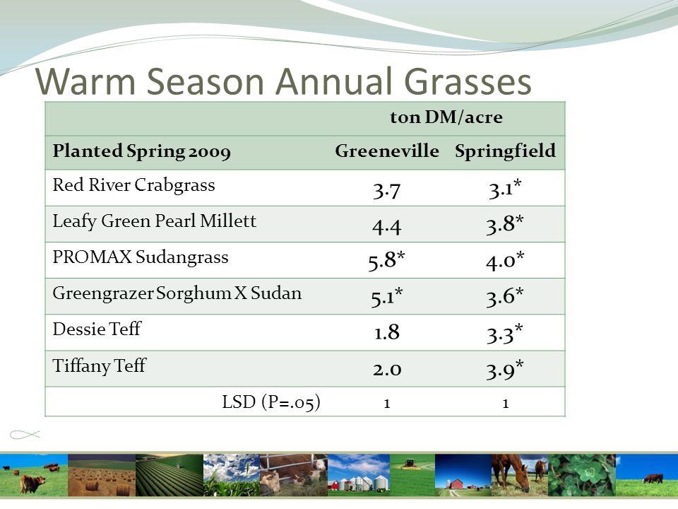 Warm Season Annual Grasses ton DM/acre Planted Spring 2009GreenevilleSpringfield Red River Crabgrass 3.73.1* Leafy Green Pearl Millett 4.43.8* PROMAX Sudangrass 5.8*4.0* Greengrazer Sorghum X Sudan 5.1*3.6* Dessie Teff 1.83.3* Tiffany Teff 2.03.9* LSD (P=.05)11