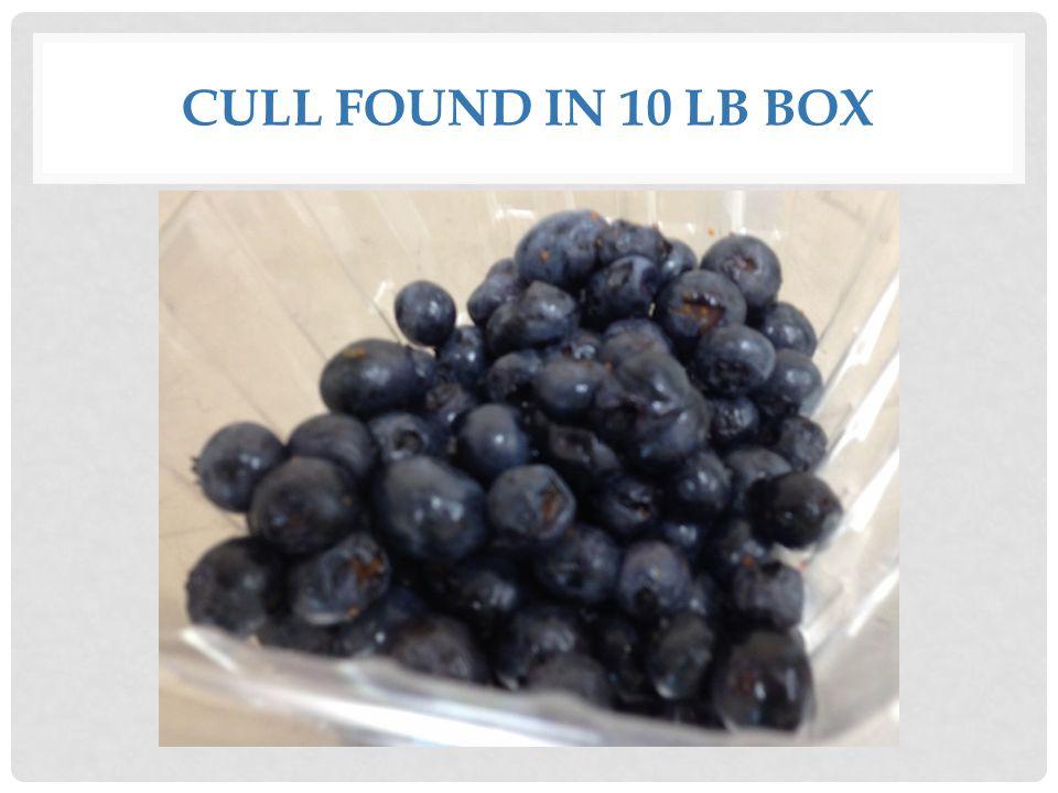 CULL FOUND IN 10 LB BOX