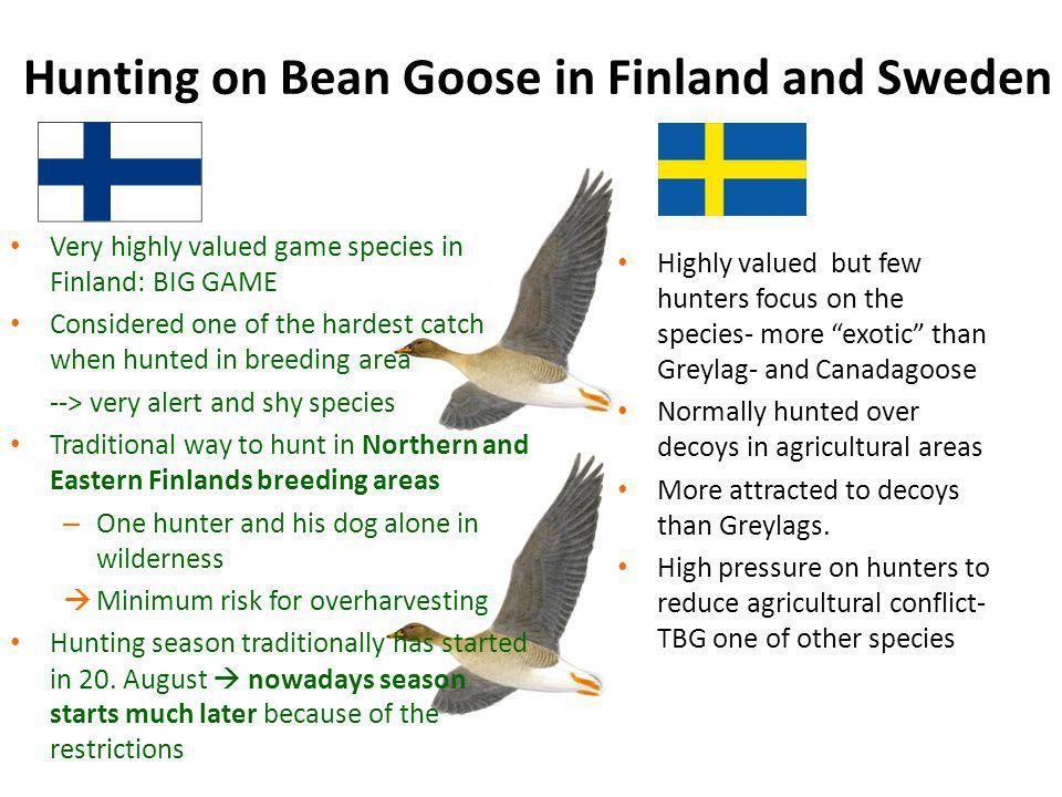 1 = North Lapland breeding area: Hunting season starts on 1.