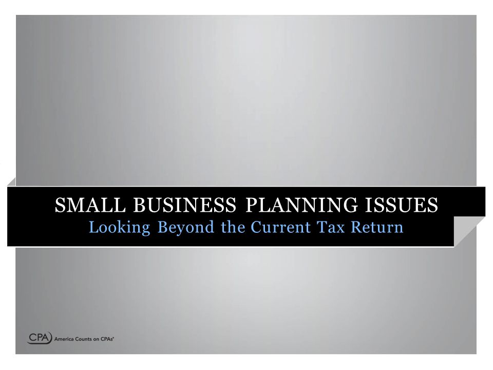 SMALL BUSINESS PLANNING ISSUES Looking Beyond the Current Tax Return