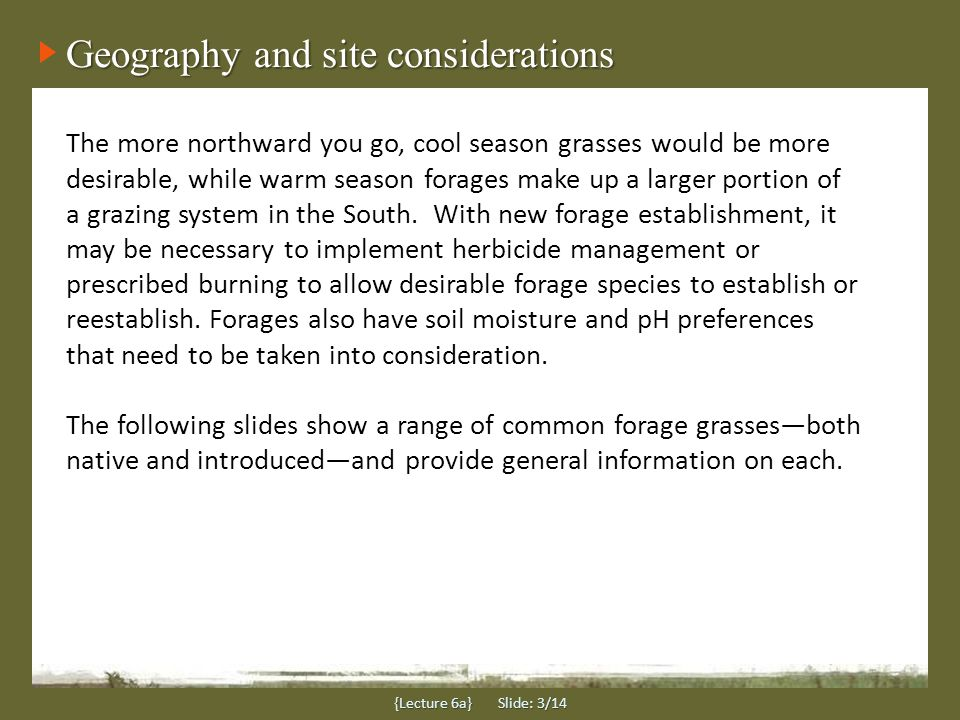 Geography and site considerations The more northward you go, cool season grasses would be more desirable, while warm season forages make up a larger portion of a grazing system in the South.