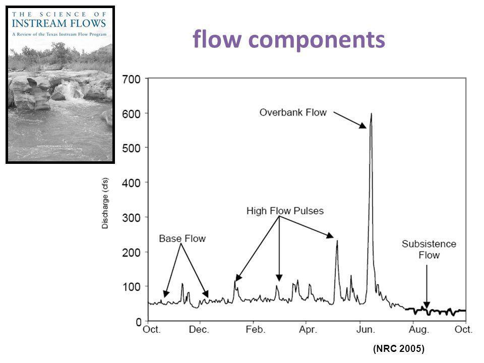 flow components (NRC 2005)