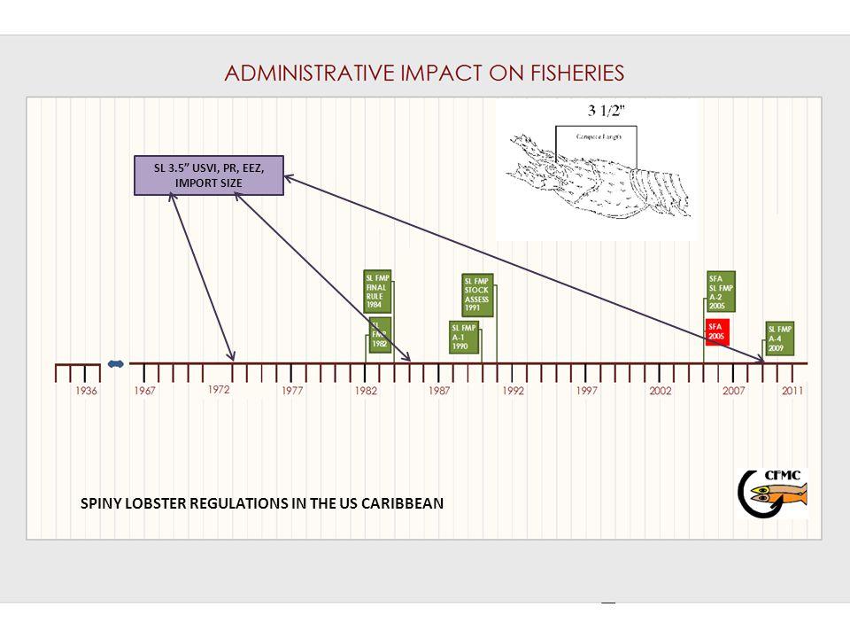 SL 3.5 USVI, PR, EEZ, IMPORT SIZE SPINY LOBSTER REGULATIONS IN THE US CARIBBEAN