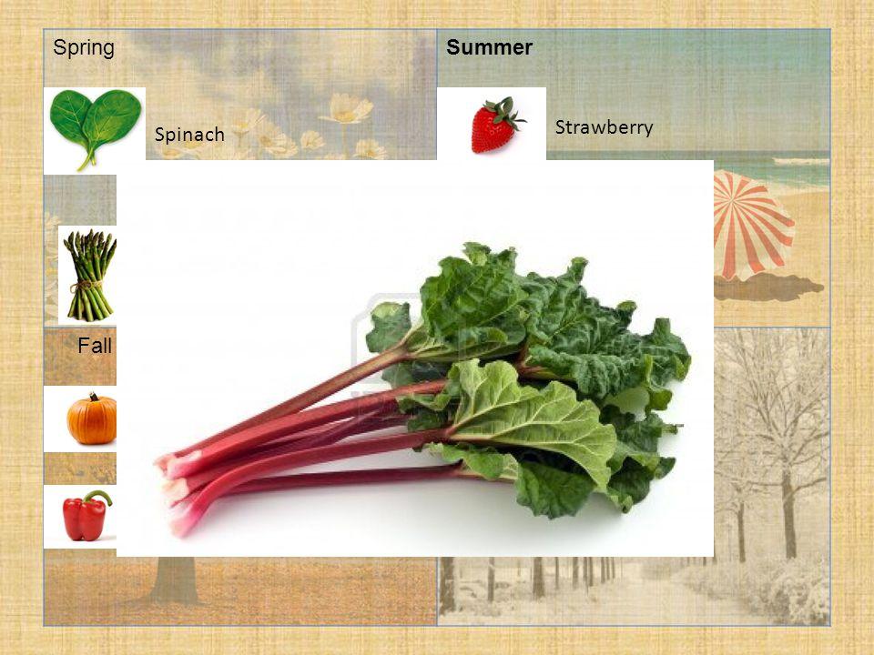 SpringSummer FallWinter Cabbage Spinach Pumpkin Asparagus Strawberry Pepper