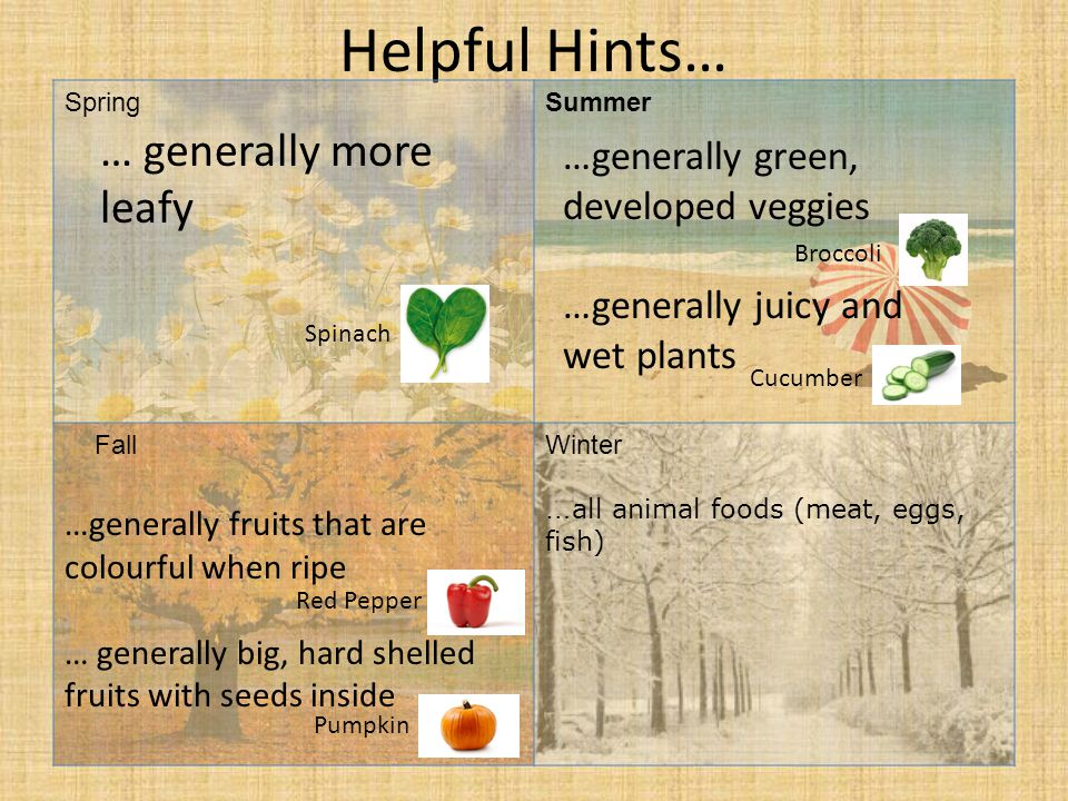 Helpful Hints… SpringSummer FallWinter … all animal foods (meat, eggs, fish) … generally more leafy …generally fruits that are colourful when ripe … generally big, hard shelled fruits with seeds inside …generally green, developed veggies …generally juicy and wet plants Spinach Broccoli Cucumber Pumpkin Red Pepper