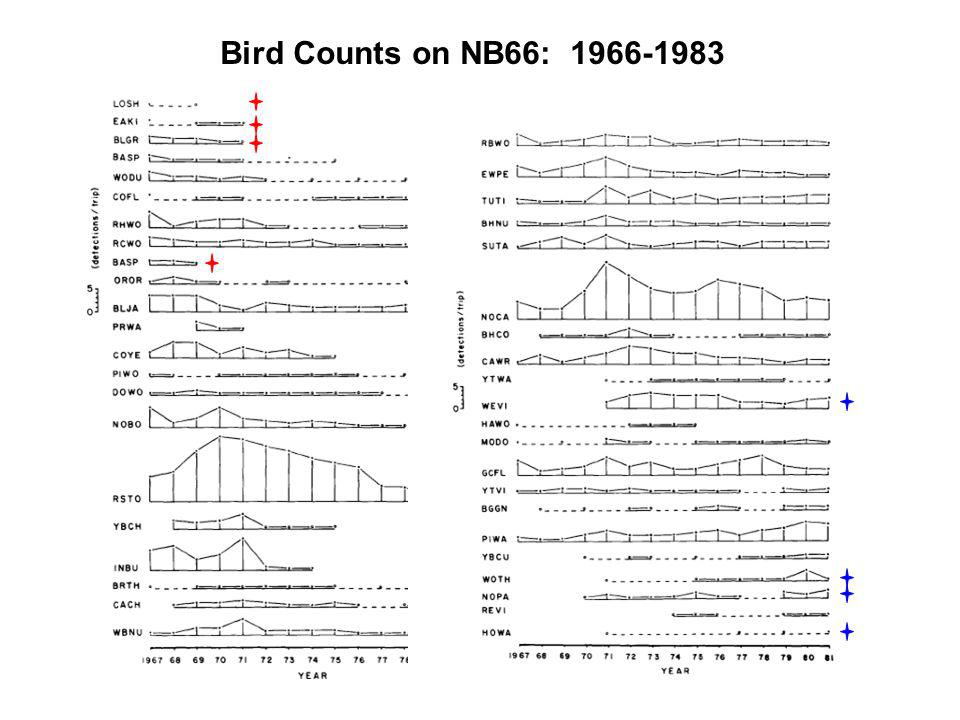 Bird Counts on NB66: 1966-1983