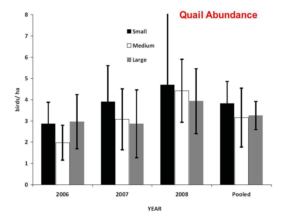 Quail Abundance