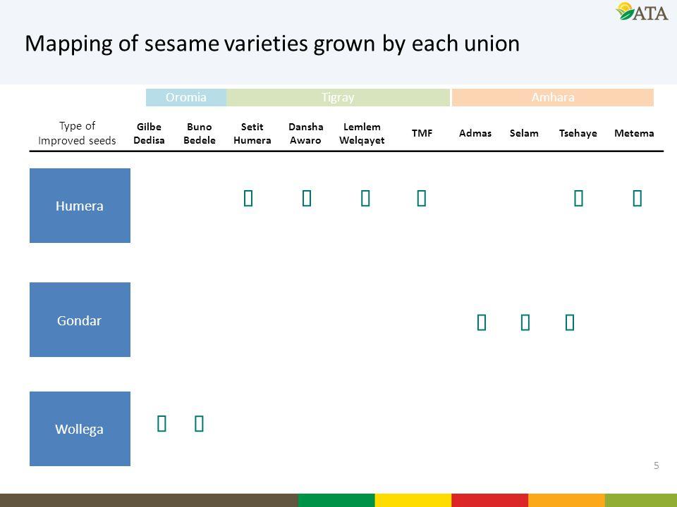 5 Mapping of sesame varieties grown by each union Type of Improved seeds Gilbe Dedisa Buno Bedele Setit Humera Dansha Awaro Lemlem Welqayet TMFAdmasSe