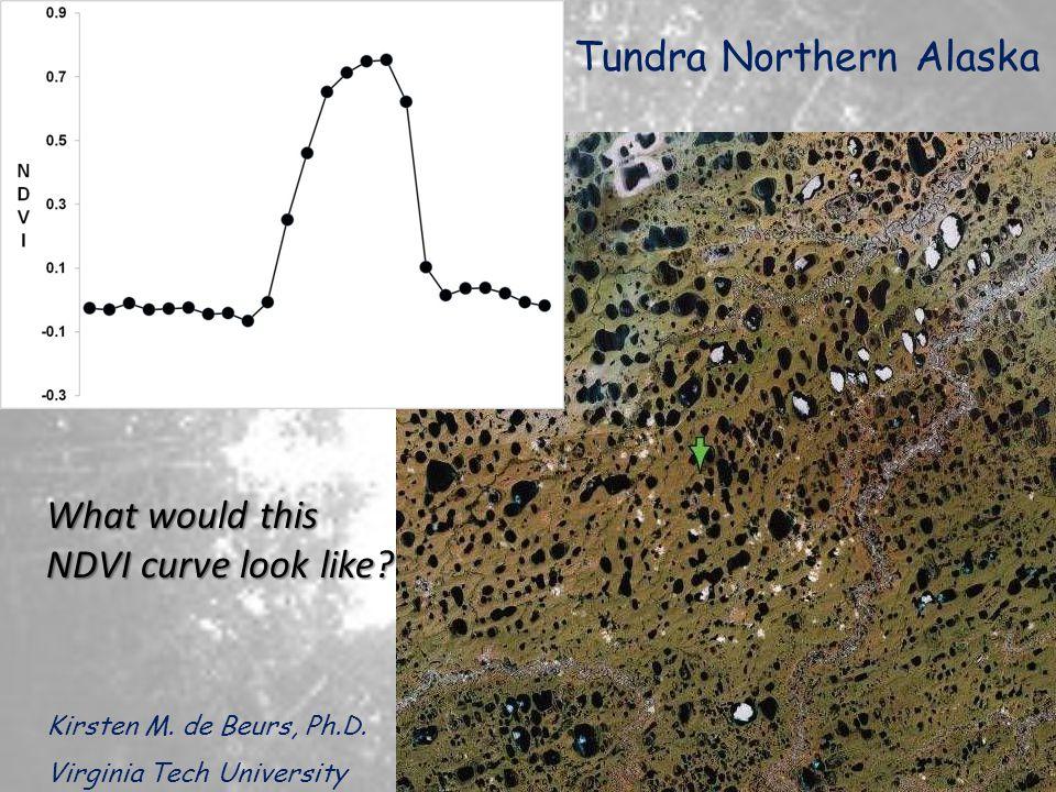 Tundra Northern Alaska Kirsten M.de Beurs, Ph.D.