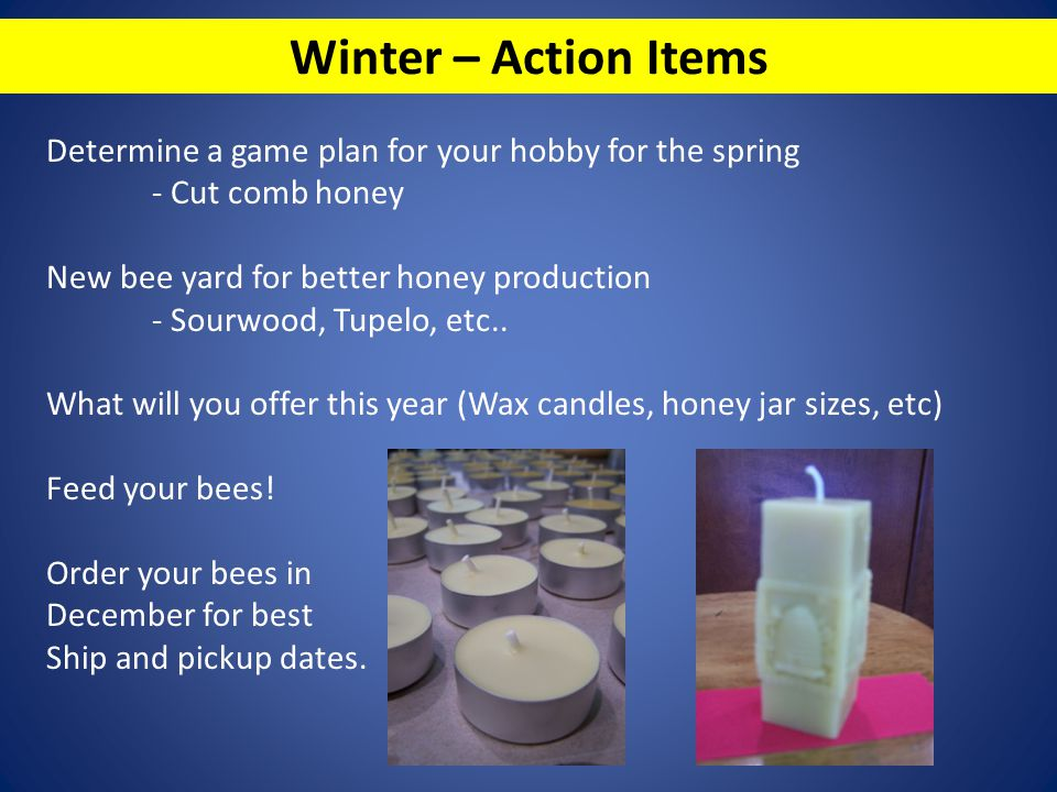 Winter – Action Items Determine a game plan for your hobby for the spring - Cut comb honey New bee yard for better honey production - Sourwood, Tupelo