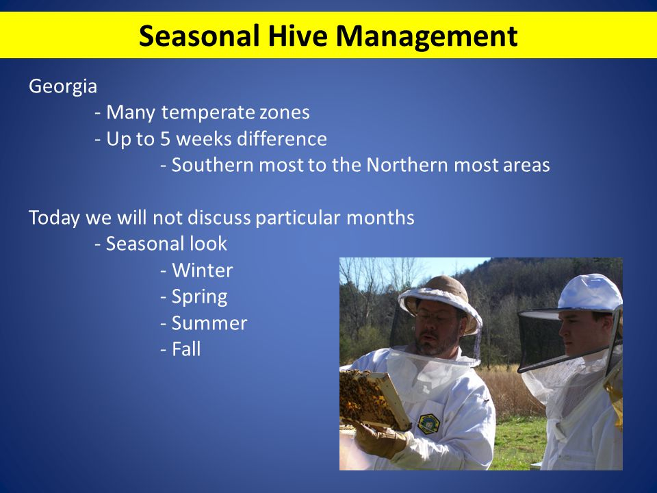 Placement of your hive - Wind break - Sun light on your hives - Document what you are seeing and follow-up - Good documentation will help you learn.