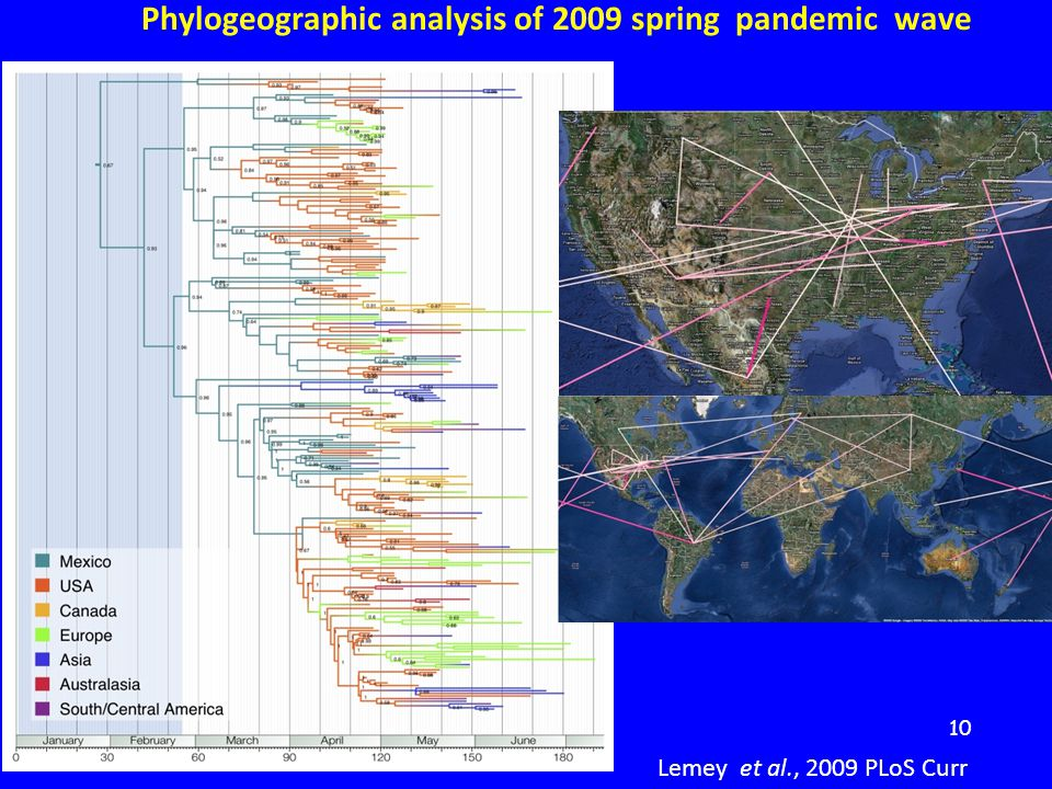 10 Lemey et al., 2009 PLoS Curr Phylogeographic analysis of 2009 spring pandemic wave