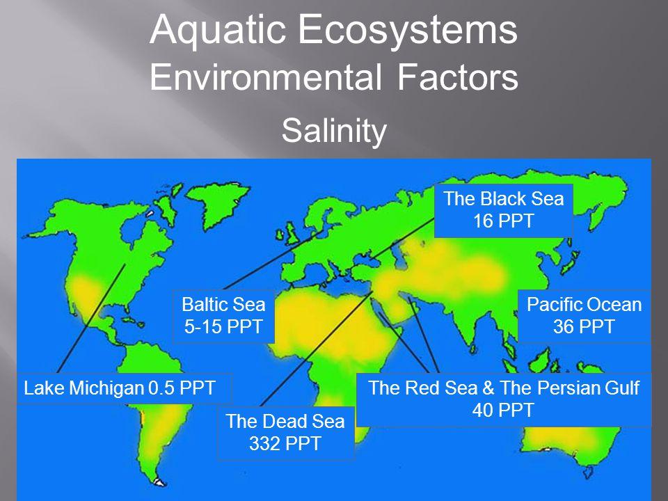 Aquatic Ecosystems Environmental Factors Currents