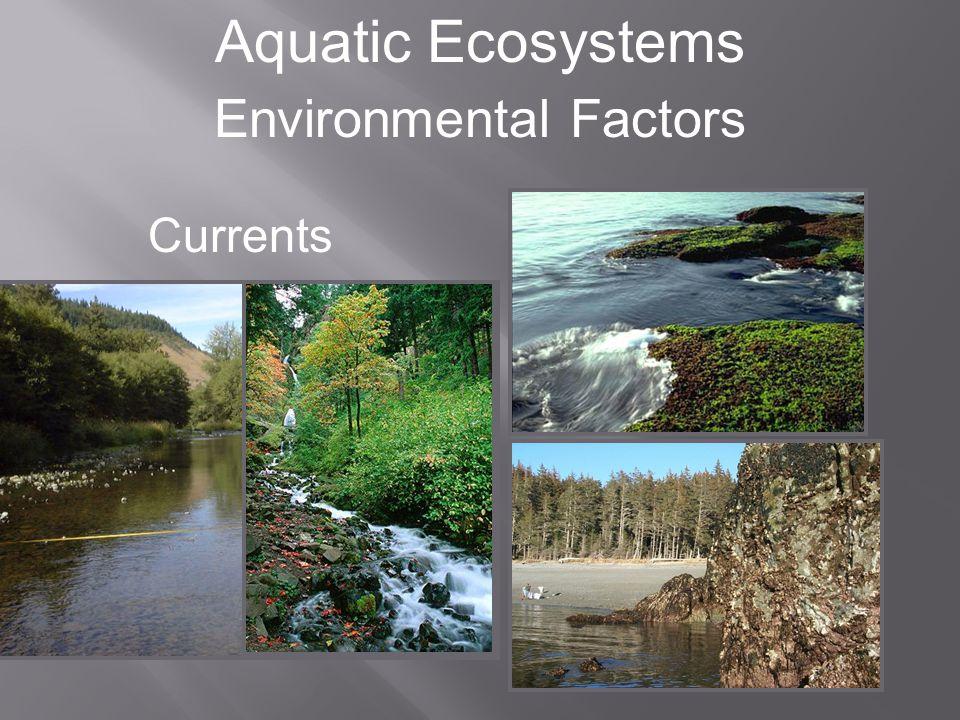 Aquatic Ecosystems Environmental Factors Dissolved Oxygen Dissolved Oxygen (mg/L) Depth (m) Temperature (ºC) Dissolved Oxygen Temperature