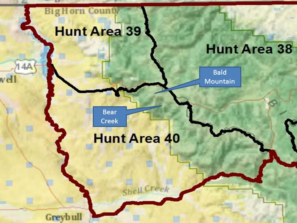North Bighorns Elk Herd Unit Sheridan Region responsible for Herd Unit and hunt areas east of Bighorn hydrographic divide (35, 36, 37 & 38).
