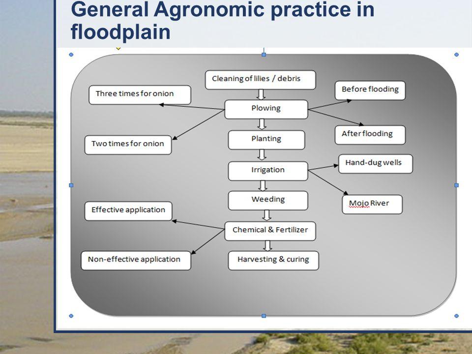 General Agronomic practice in floodplain