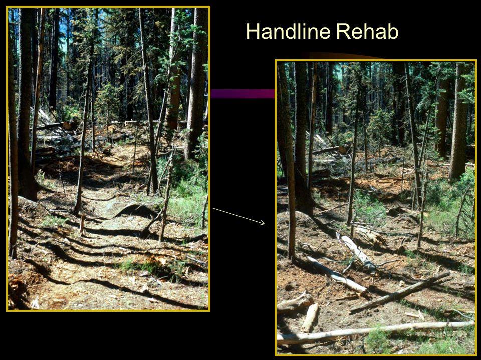 Handline Rehab