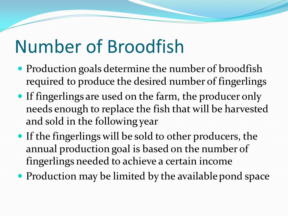 Number of Broodfish Production goals determine the number of broodfish required to produce the desired number of fingerlings If fingerlings are used o