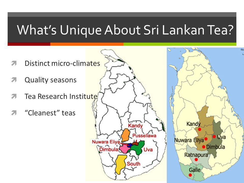 Whats Unique About Sri Lankan Tea.
