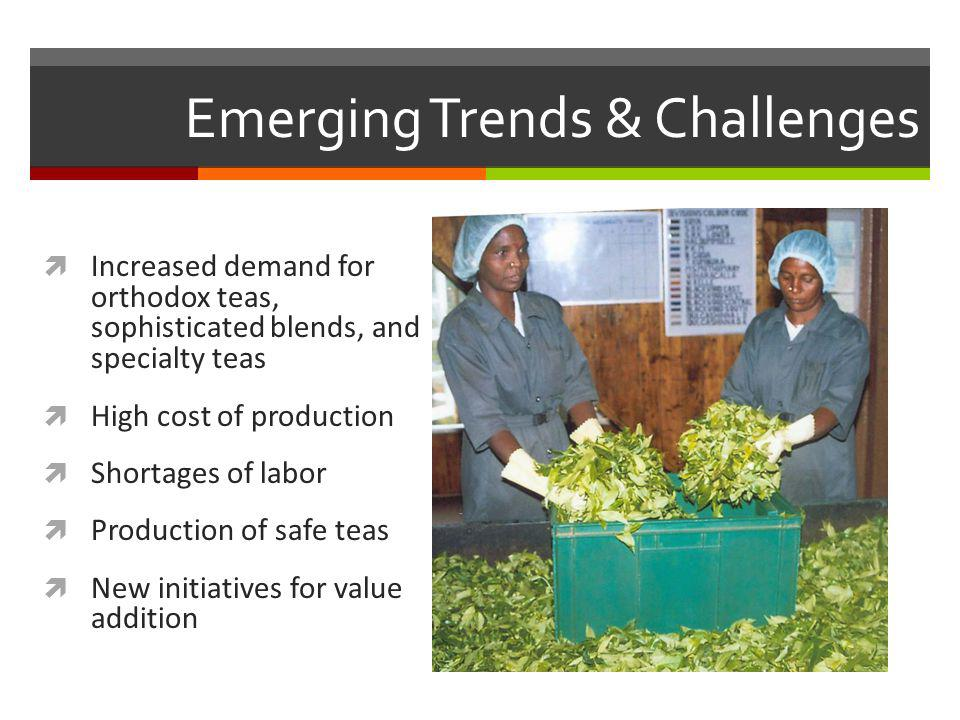 Emerging Trends & Challenges Increased demand for orthodox teas, sophisticated blends, and specialty teas High cost of production Shortages of labor Production of safe teas New initiatives for value addition