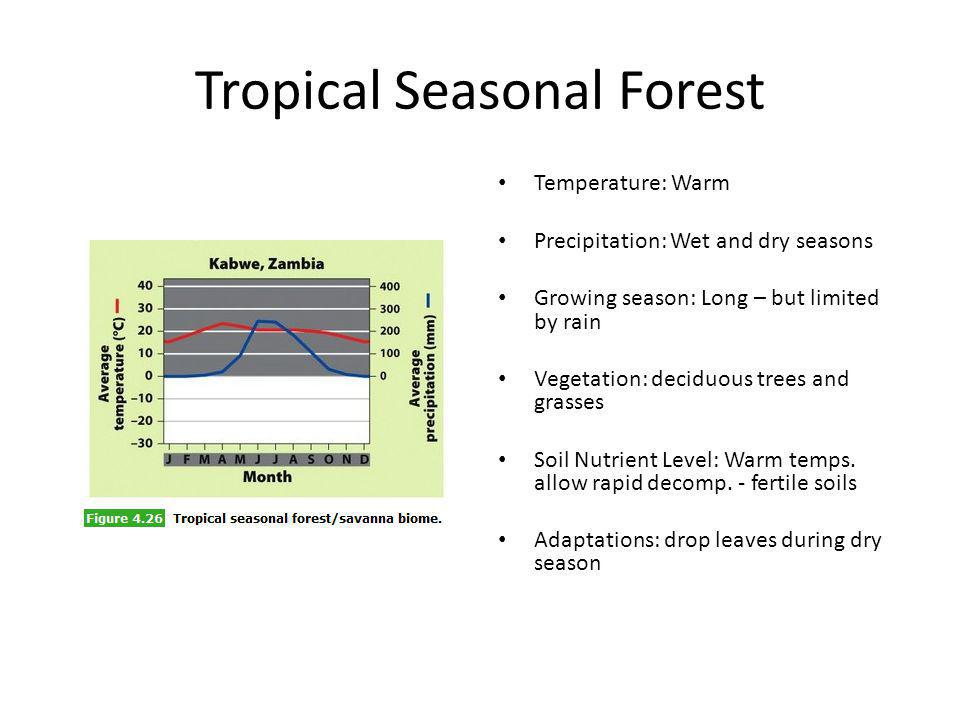 Tropical Seasonal Forest Temperature: Warm Precipitation: Wet and dry seasons Growing season: Long – but limited by rain Vegetation: deciduous trees a