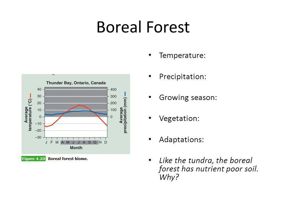 Boreal Forest Temperature: Precipitation: Growing season: Vegetation: Adaptations: Like the tundra, the boreal forest has nutrient poor soil. Why?