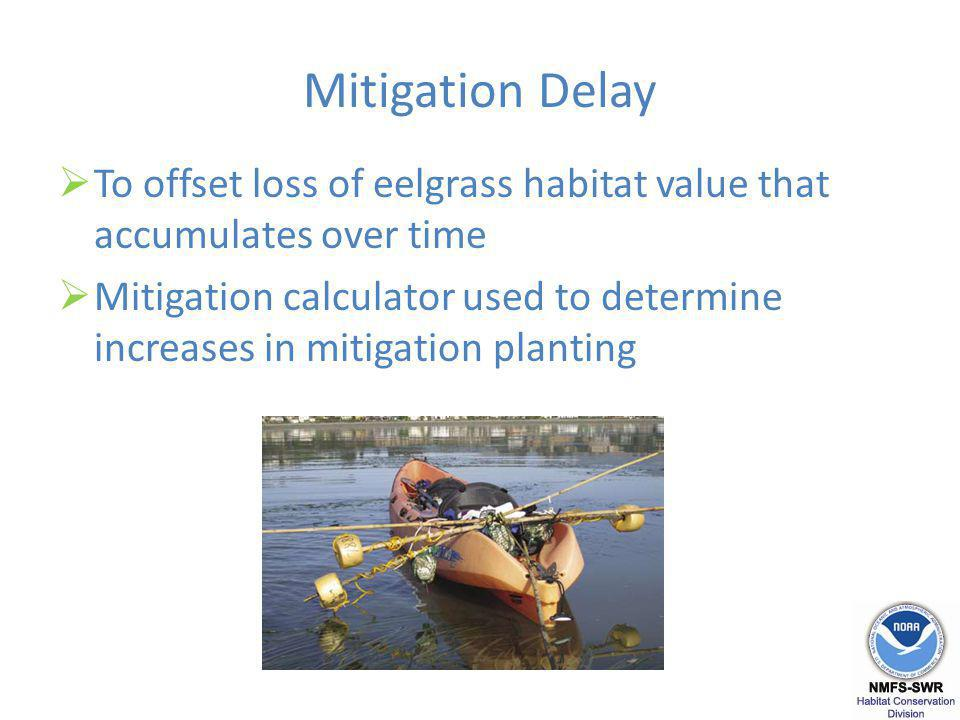 Mitigation Delay To offset loss of eelgrass habitat value that accumulates over time Mitigation calculator used to determine increases in mitigation planting