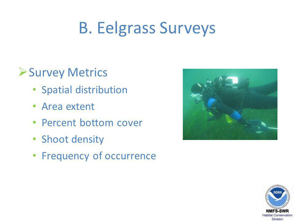 B. Eelgrass Surveys Survey Metrics Spatial distribution Area extent Percent bottom cover Shoot density Frequency of occurrence