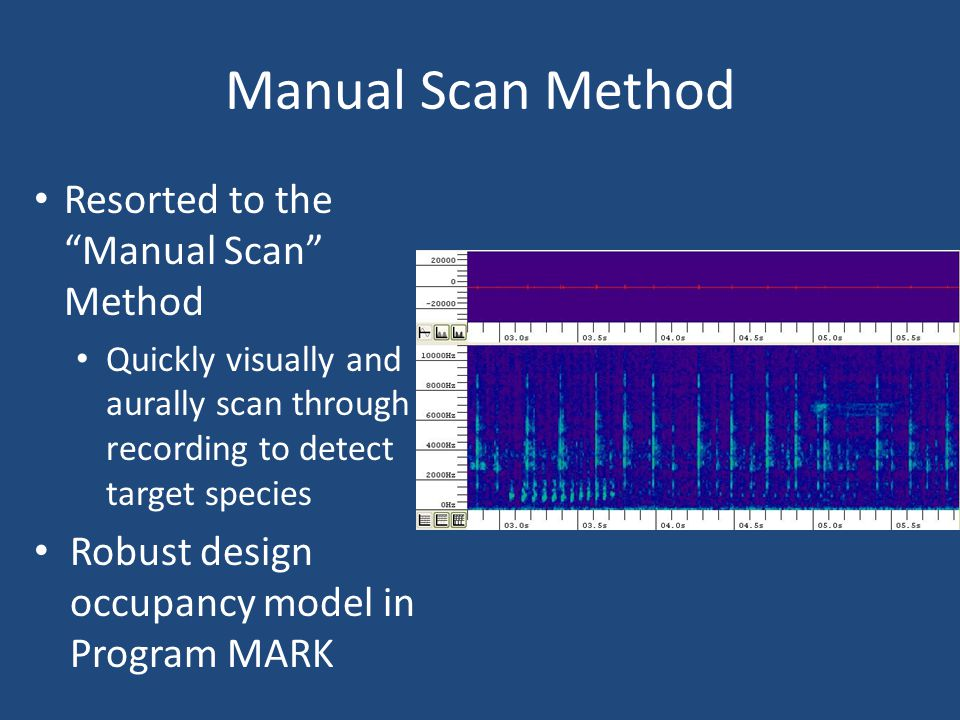 Manual Scan Method Resorted to the Manual Scan Method Quickly visually and aurally scan through recording to detect target species Robust design occupancy model in Program MARK