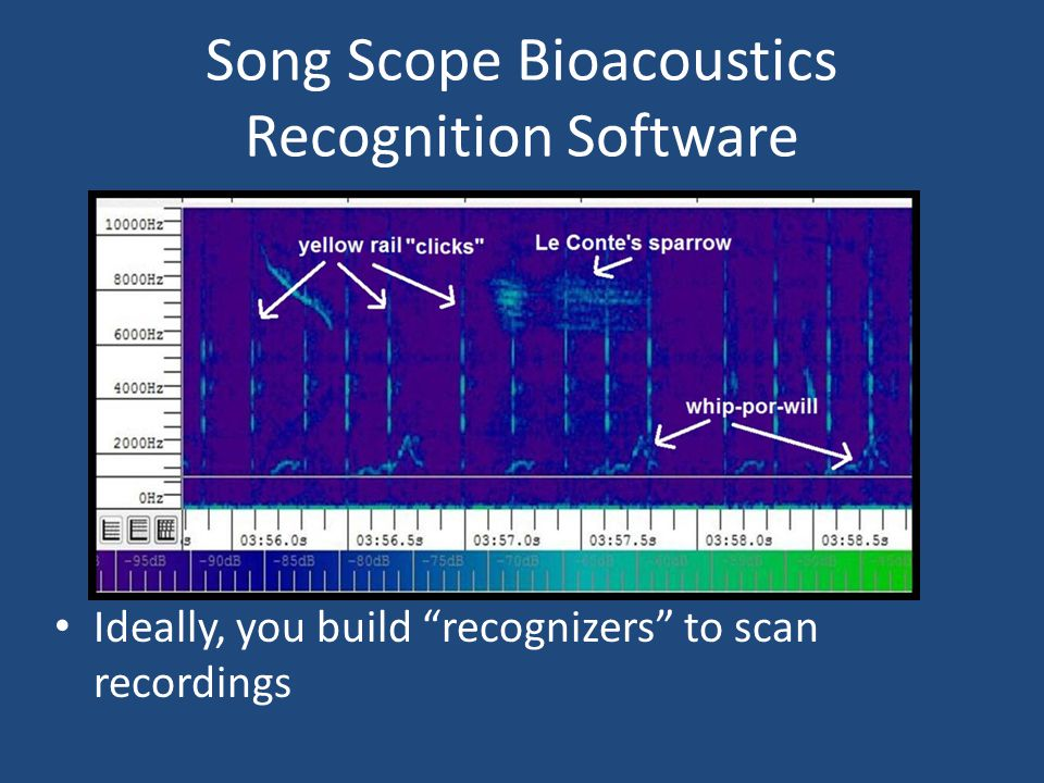 Song Scope Bioacoustics Recognition Software Ideally, you build recognizers to scan recordings