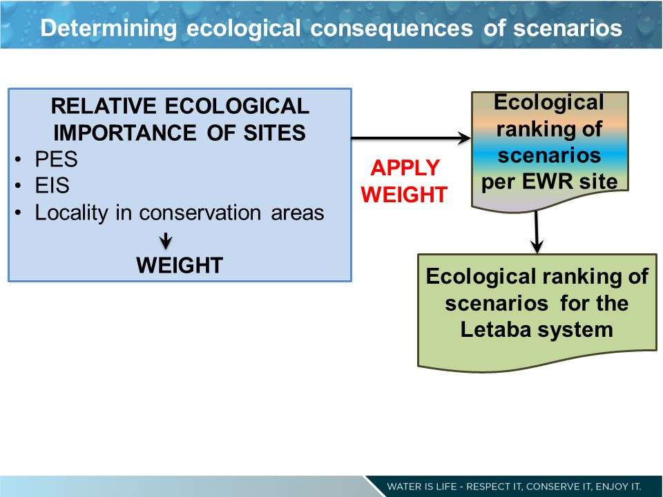 Determining ecological consequences of scenarios Ecological ranking of scenarios per EWR site RELATIVE ECOLOGICAL IMPORTANCE OF SITES PES EIS Locality in conservation areas WEIGHT Ecological ranking of scenarios for the Letaba system APPLY WEIGHT