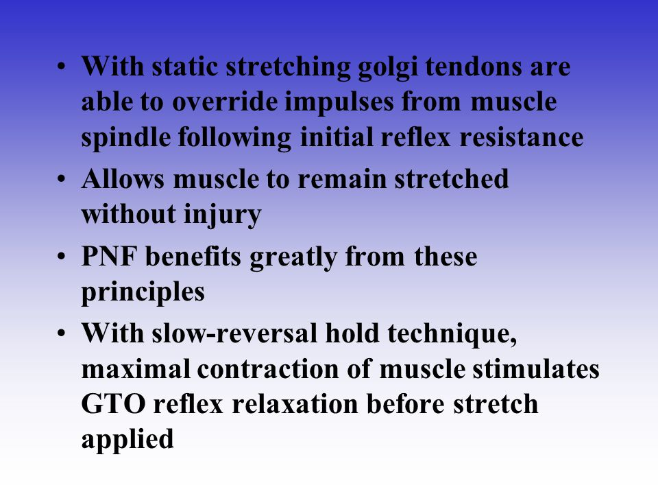 With static stretching golgi tendons are able to override impulses from muscle spindle following initial reflex resistance Allows muscle to remain str