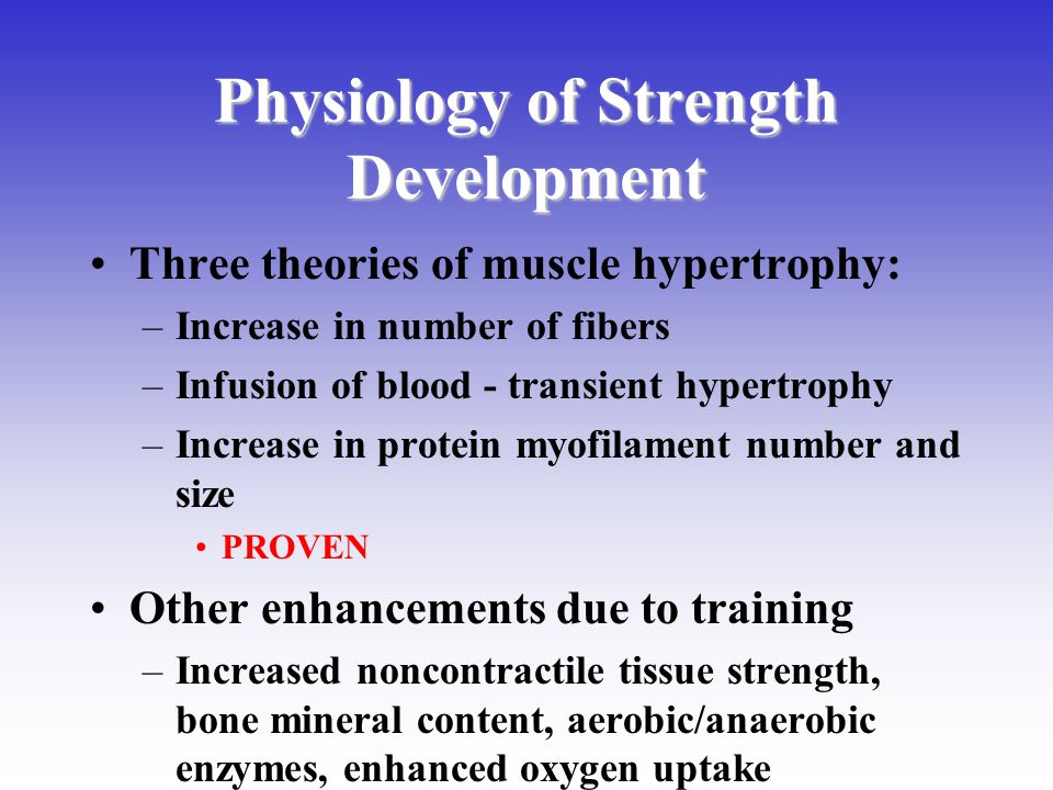 Physiology of Strength Development Three theories of muscle hypertrophy: –Increase in number of fibers –Infusion of blood - transient hypertrophy –Inc