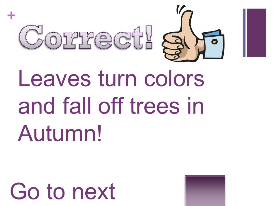 + Leaves turn colors and fall off trees in Autumn! Go to next question