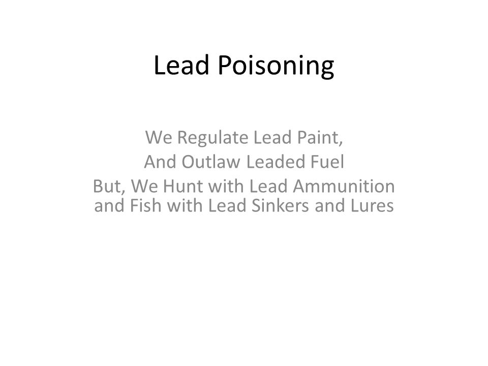 Lead Poisoning We Regulate Lead Paint, And Outlaw Leaded Fuel But, We Hunt with Lead Ammunition and Fish with Lead Sinkers and Lures