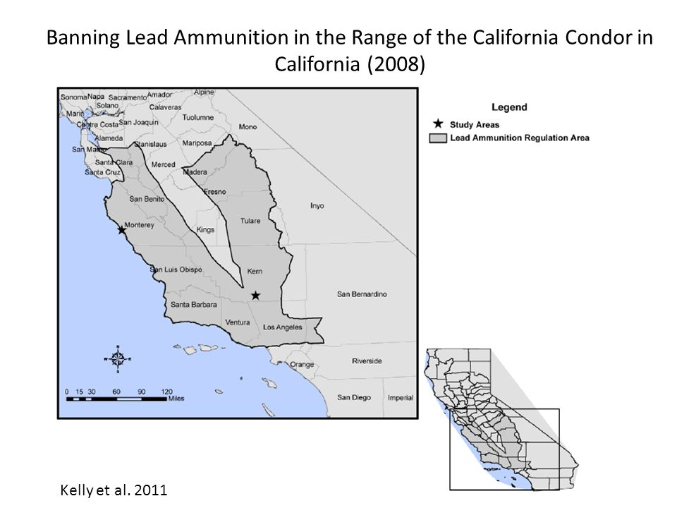 Banning Lead Ammunition in the Range of the California Condor in California (2008) Kelly et al.