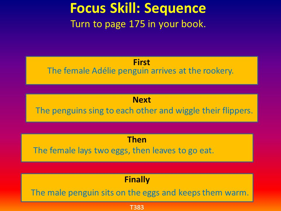 Focus Skill: Sequence Turn to page 175 in your book. First Next Then Finally The female Adélie penguin arrives at the rookery. The penguins sing to ea