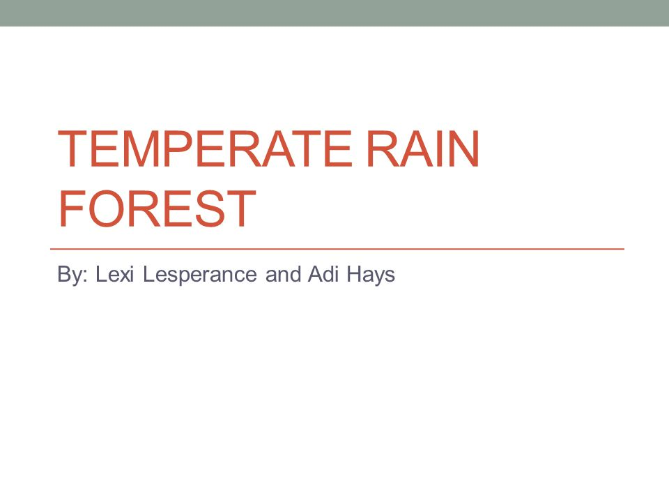 TEMPERATE RAIN FOREST By: Lexi Lesperance and Adi Hays